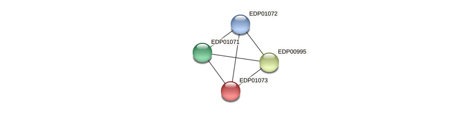 EDP01073 protein (Chlamydomonas reinhardtii) - STRING interaction network