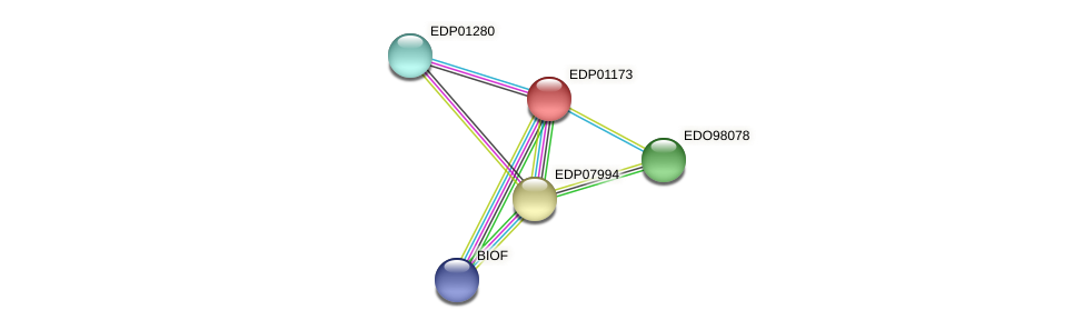 EDP01173 protein (Chlamydomonas reinhardtii) - STRING interaction network