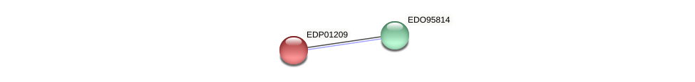 EDP01209 protein (Chlamydomonas reinhardtii) - STRING interaction network