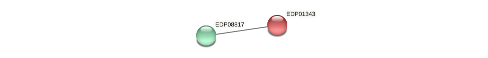 EDP01343 protein (Chlamydomonas reinhardtii) - STRING interaction network