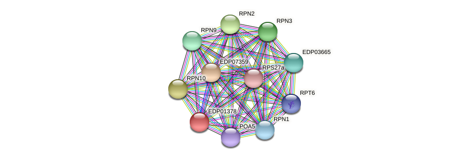 EDP01378 protein (Chlamydomonas reinhardtii) - STRING interaction network