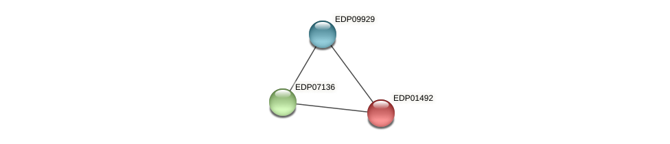 EDP01492 protein (Chlamydomonas reinhardtii) - STRING interaction network