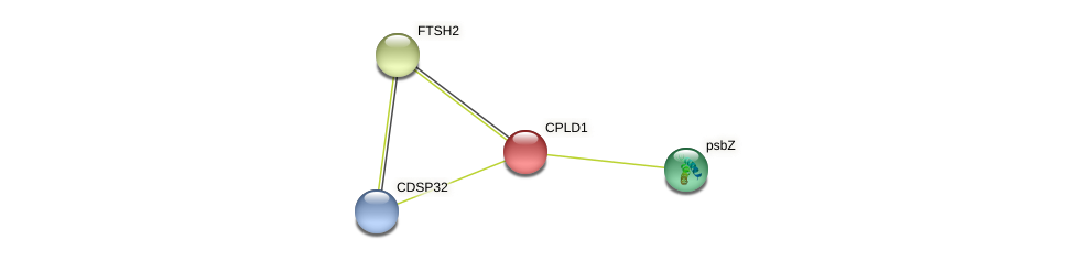 CPLD1 protein (Chlamydomonas reinhardtii) - STRING interaction network