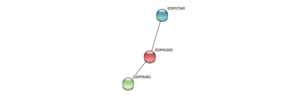 EDP01600 protein (Chlamydomonas reinhardtii) - STRING interaction network
