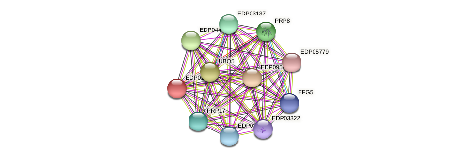 EDP01894 protein (Chlamydomonas reinhardtii) - STRING interaction network