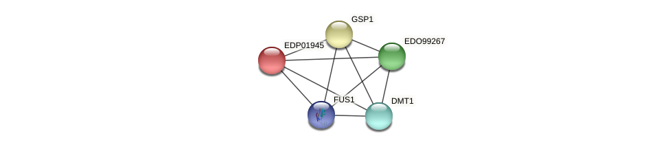 EDP01945 protein (Chlamydomonas reinhardtii) - STRING interaction network