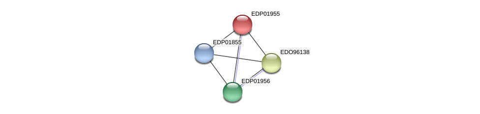 EDP01955 protein (Chlamydomonas reinhardtii) - STRING interaction network