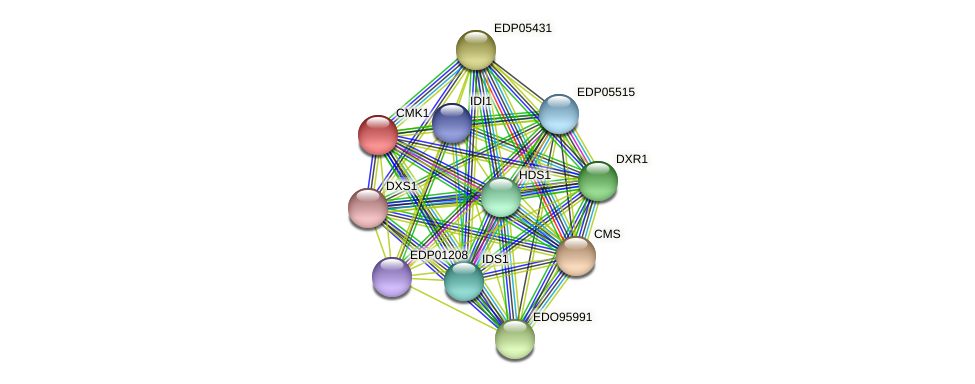 CMK1 protein (Chlamydomonas reinhardtii) - STRING interaction network