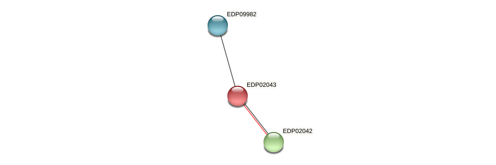 EDP02043 protein (Chlamydomonas reinhardtii) - STRING interaction network