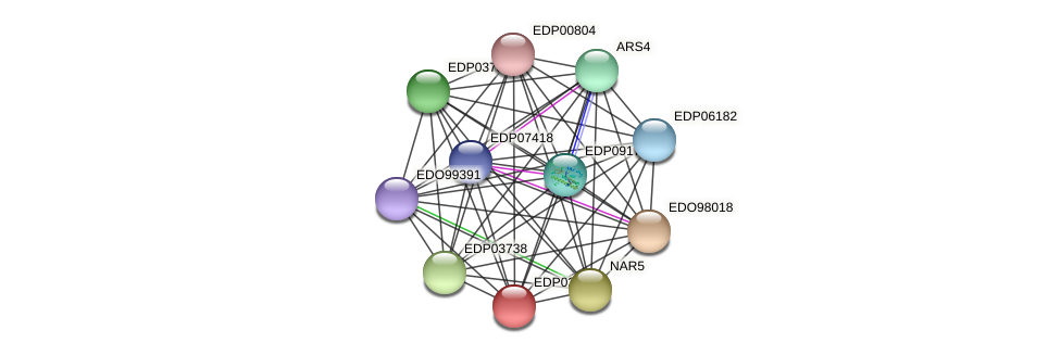 EDP02119 protein (Chlamydomonas reinhardtii) - STRING interaction network