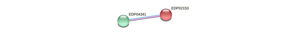EDP02153 protein (Chlamydomonas reinhardtii) - STRING interaction network