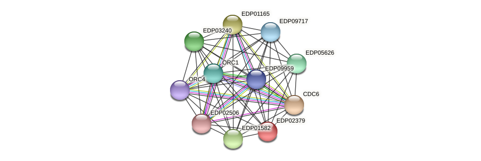 EDP02379 protein (Chlamydomonas reinhardtii) - STRING interaction network