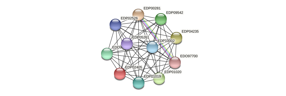 EDP02405 protein (Chlamydomonas reinhardtii) - STRING interaction network
