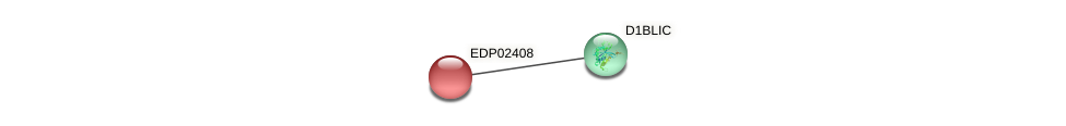 EDP02408 protein (Chlamydomonas reinhardtii) - STRING interaction network
