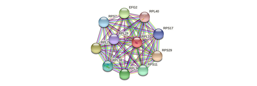 RPL10 protein (Chlamydomonas reinhardtii) - STRING interaction network