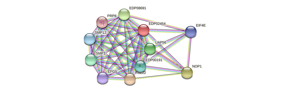 EDP02454 protein (Chlamydomonas reinhardtii) - STRING interaction network