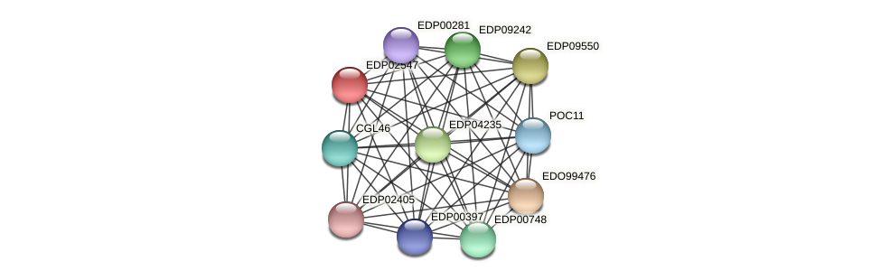 EDP02547 protein (Chlamydomonas reinhardtii) - STRING interaction network