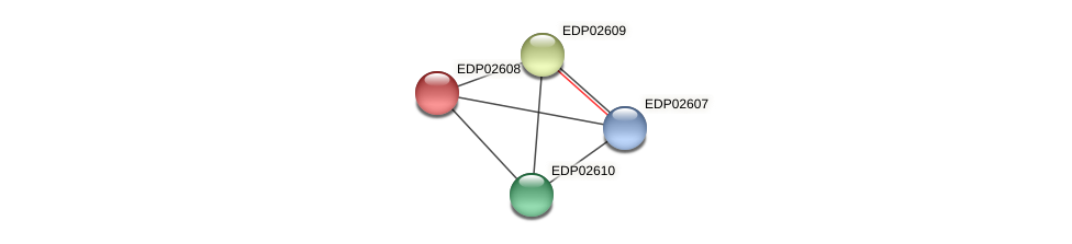 EDP02608 protein (Chlamydomonas reinhardtii) - STRING interaction network