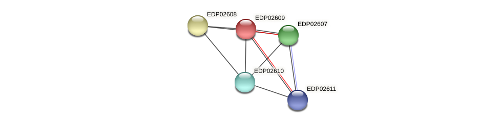 EDP02609 protein (Chlamydomonas reinhardtii) - STRING interaction network