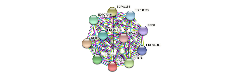 EDP02864 protein (Chlamydomonas reinhardtii) - STRING interaction network