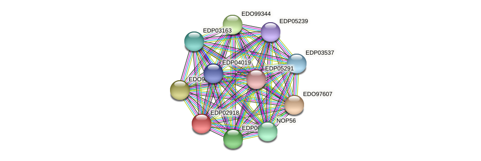 EDP02918 protein (Chlamydomonas reinhardtii) - STRING interaction network