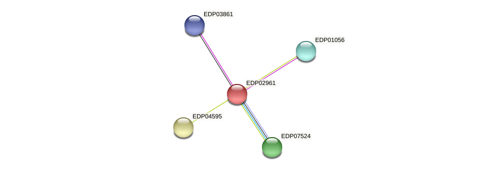 EDP02961 protein (Chlamydomonas reinhardtii) - STRING interaction network