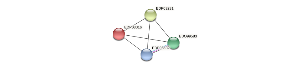 EDP03016 protein (Chlamydomonas reinhardtii) - STRING interaction network