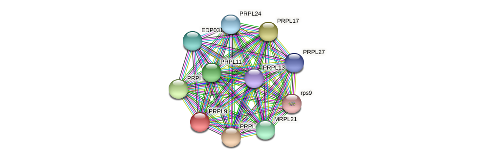 PRPL9 protein (Chlamydomonas reinhardtii) - STRING interaction network