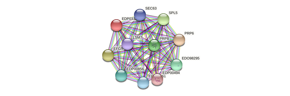 EDP03124 protein (Chlamydomonas reinhardtii) - STRING interaction network