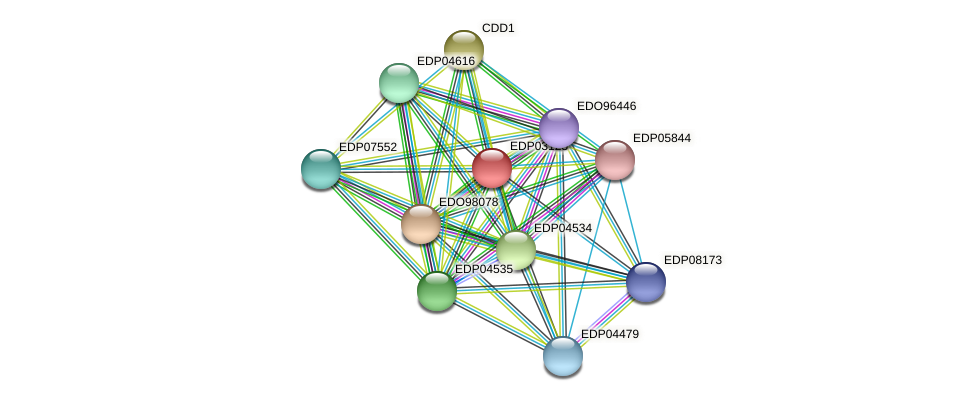 EDP03125 protein (Chlamydomonas reinhardtii) - STRING interaction network