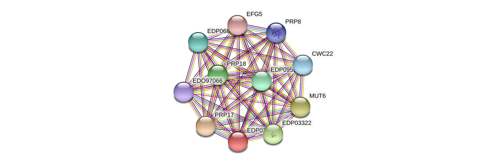 EDP03137 protein (Chlamydomonas reinhardtii) - STRING interaction network