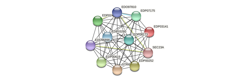 EDP03141 protein (Chlamydomonas reinhardtii) - STRING interaction network