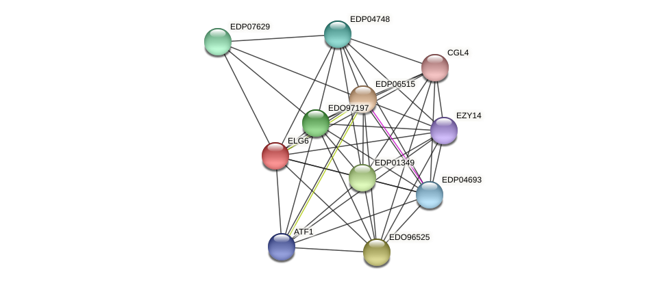 ELG6 protein (Chlamydomonas reinhardtii) - STRING interaction network