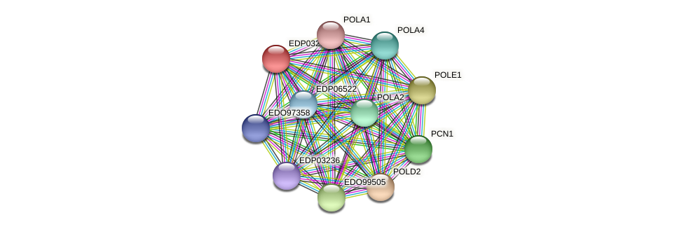 EDP03268 protein (Chlamydomonas reinhardtii) - STRING interaction network