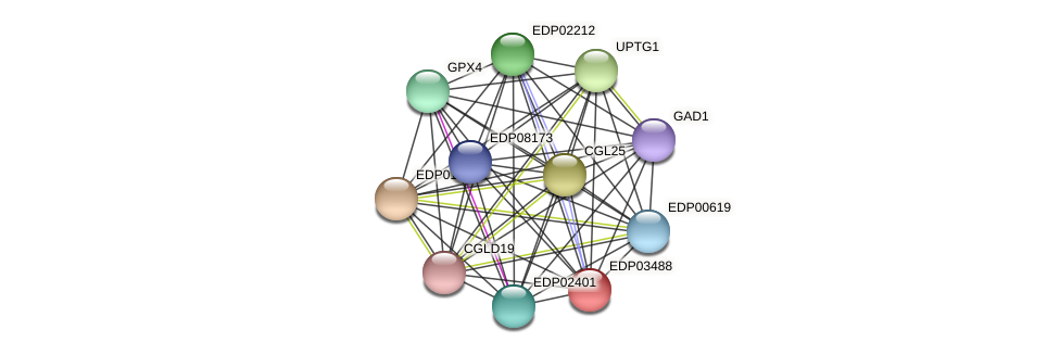 EDP03488 protein (Chlamydomonas reinhardtii) - STRING interaction network