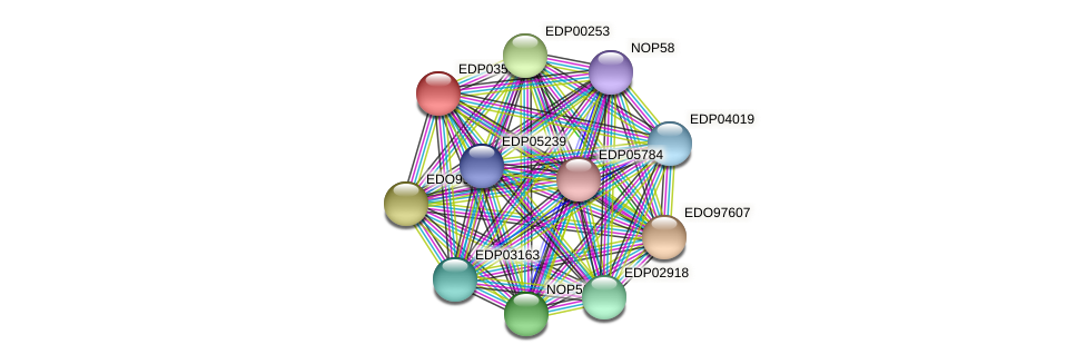 EDP03537 protein (Chlamydomonas reinhardtii) - STRING interaction network