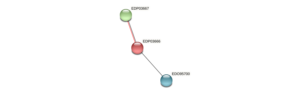 EDP03666 protein (Chlamydomonas reinhardtii) - STRING interaction network