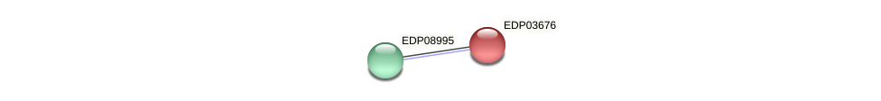 EDP03676 protein (Chlamydomonas reinhardtii) - STRING interaction network