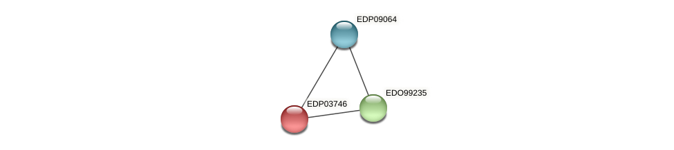 EDP03746 protein (Chlamydomonas reinhardtii) - STRING interaction network