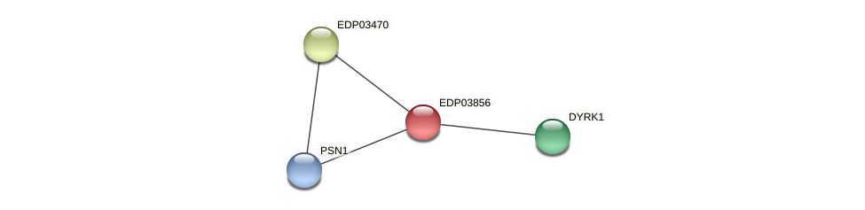 EDP03856 protein (Chlamydomonas reinhardtii) - STRING interaction network