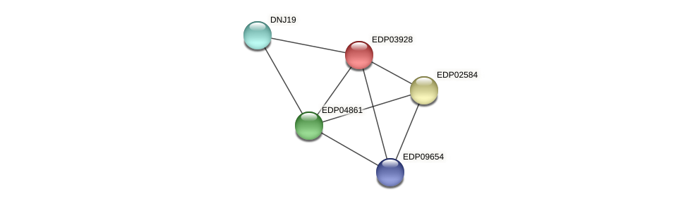 EDP03928 protein (Chlamydomonas reinhardtii) - STRING interaction network