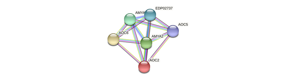 AOC2 protein (Chlamydomonas reinhardtii) - STRING interaction network