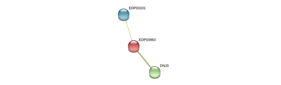 EDP03963 protein (Chlamydomonas reinhardtii) - STRING interaction network