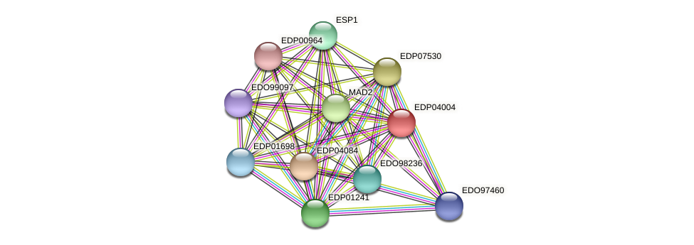 EDP04004 protein (Chlamydomonas reinhardtii) - STRING interaction network