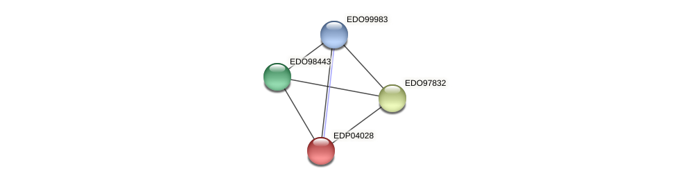 EDP04028 protein (Chlamydomonas reinhardtii) - STRING interaction network