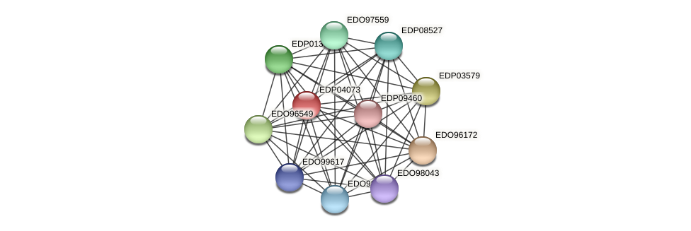 EDP04073 protein (Chlamydomonas reinhardtii) - STRING interaction network