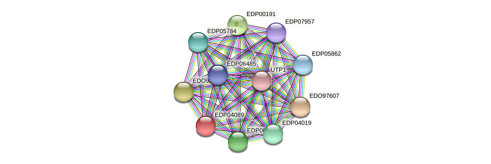 EDP04089 protein (Chlamydomonas reinhardtii) - STRING interaction network