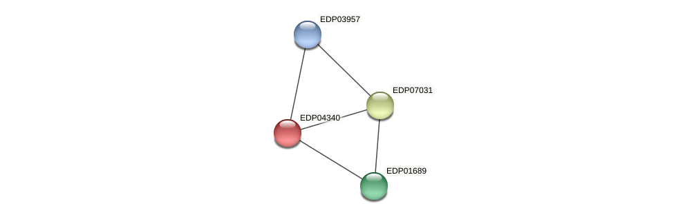 EDP04340 protein (Chlamydomonas reinhardtii) - STRING interaction network