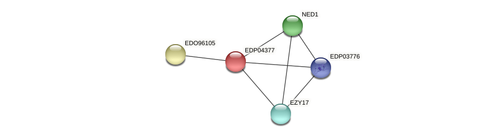 EDP04377 protein (Chlamydomonas reinhardtii) - STRING interaction network