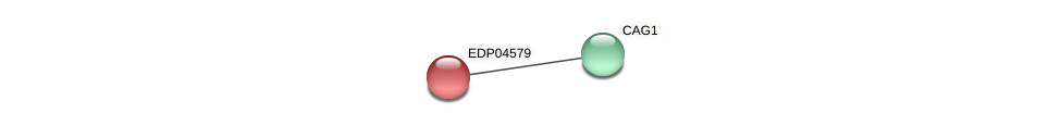 EDP04579 protein (Chlamydomonas reinhardtii) - STRING interaction network